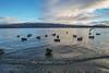Loch Lomond, Scotland (spensered) Tags: luss scotland highlands