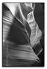 A Tight Squeeze BW (seagr112) Tags: unitedstates arizona slotcanyon upperantelopecanyon antelopecanyon pageaz