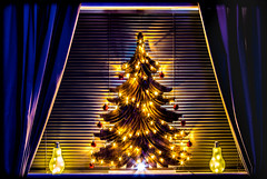 Xmas Tree. . . (CWhatPhotos) Tags: cwhatphotos happy holidays canon 5d mk iii 100mm prime lens colors color colours colour picture pictures photo photos image images foto fotos that have which contain xmas christmas crimbo tree wood wooden solid lights festive time new year 2017 2018 christmastree