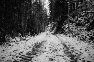 *** alone along the way ***