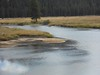 130817-03 (2013-08-21) - 0068 (scoryell) Tags: california elk tuolumnemeadows tuolumneriver yosemitenationalpark
