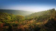 Autunno in Val di Spin (Massimo Guercini) Tags: sky landscape tree colori autunno valdispin colli colline prati aridiprati natura collieuganei euganeanhills veneto nikon nikond5000 tokina1116mm