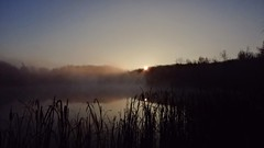"""Light pierces the silent night"" (Steve InMichigan) Tags: morningsunrise morning sunrise fog lakesunrise lake fogline dawn panasoniclumixdmcfz70"