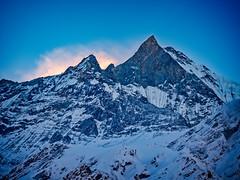 First light, MBC, Nepal (CamelKW) Tags: abc annapurnabasecamptrek annapurnaregiontrek annapurnasanctuary fishtail kathmandu mbc machapuchare machapucharebasecamp nepal pokhara trekking