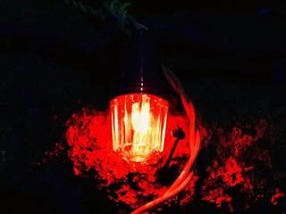 #shotoniphone7plus #light#color#nopeople#