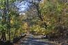 341 Roadway (Felton Davis) Tags: palisades njpalisades huylerslandingtrail thelongpath georgewashingtonbridge