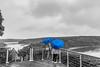 Blue Umbrellas (Shastajak) Tags: châteaudelarochejagu rivertrieux ploëzal brittany france raining monochrome selectivecolour viewpoint viaduct