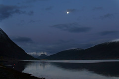 Moon Over Isfjorden (Elfworld) Tags: isfjorden fjord rauma november moon fullmoon åndalsnes sea dawn morning autumn seagull nature blue sky clouds reflection norway norge romsdal