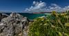 BZH (khan.Nirrep.Photo) Tags: sky seascape sea sable camaret bretagne breizh bleu blue beach litoral landscape lumière lighthouse finistère falaise flower fleur presquile canon canon6d canon1635mmf28liiusm
