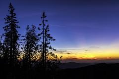 High Sierra Sunset (Explored) (punahou77) Tags: basslake oakhurst california clouds color stevejordan sierras sierranevada sierranationalforest sunset sky silhouette punahou77 pines nature nikond500 nikon night blue