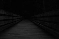 Isolation (dzmears) Tags: grey dark forest woods black park walkway blackandwhite isolation white