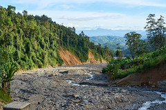 Dry season (DavidTeufel) Tags: asia laos travel adventure sony alpha motorbiketour jungle river dry trees forest