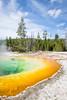 Geysers-2282 (ChadBarry) Tags: spring ynp yellowstone colors geothermal geyers geyser geyserbasin nationalparks