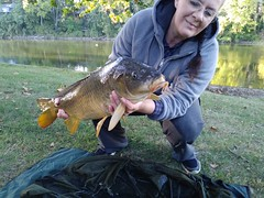 Just a few beauties caught using baits from Angler Carp Baits  https://anglercarpbaits.com (anglercarpbaits) Tags: carp bait fishing lakes rivers carpfishing carpanglers