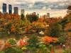 Overcast but Colorful (gimmeocean) Tags: centralpark manhattan newyorkcity newyork nyc ny fall foliage fallfoliage autumnal autumn thepond gapstowbridge timewarner timewarnercenter iphoneography iphonenography snapseed