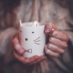 (Siréliss) Tags: siréliss winter fall cozy comfort mug cat cute hands cold