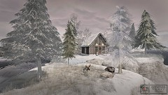 Ammos Homes (MoonsoulResident) Tags: ammos rental snow winter cabin logcabin forrent home landscape decor decorating sim landscaping christmas holiday festive deer snowman christmastree cedar snowy cold sleigh