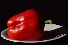 DSC_2325_4020 - Relaxed pepper. (angelo appoloni) Tags: natura morta peperone rosso piatto bianco still life red pepper white plate