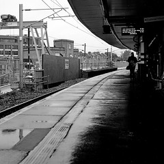 Waiting:Finsbury Park Station London (Mike Cook 67) Tags: epsomv550 urbanurbanurban filmshooter blackandwhiteunlimited analogphotography amateur londonalt contrast 120film northlondon london railwaystation yashica124g mediumformat finsburypark station blackwhite yashicamat124g