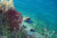 My favourite beach in autumn (borisnaumoski) Tags: ohrid macedonia gradiste beach lake nature autumn fall water