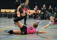 4C021299 (roel.ubels) Tags: tt talentteam papendal fast arnhem flynth volleybal volleyball eredivisie sport topsport 2017 valkenhuizen