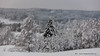 20171129001115 (koppomcolors) Tags: koppomcolors winter vinter snö snow forest skog värmland varmland sweden sverige scandinavia