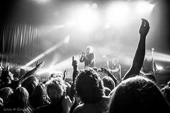 El furor de los buitres (Gonzak) Tags: guz uruguay 2016 7100 buitres flickr gente gonzak montevideo music musica rock toque trastienda uz band bandas movida nikon people photo recital show useta