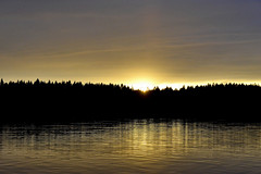Harri Halmejärvi (halmejarvi) Tags: roihu 2016 evo partio leiri lähtöpäivä kotiin lähtö viimeinen päivä pakkaus lopetus vesi järvi auringonlasku kajastus metsänraja pelaus kotiinlähtö
