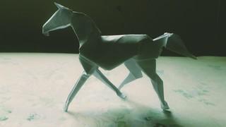 Horse (David Brill)