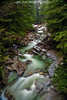 denny creek 11-30-17 (Light of the Moon Photography) Tags: winter washington creek denny national forest snoqualmie baker