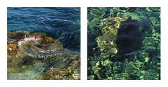 dual moments (giovdim) Tags: giovis nisyros sea water color summer postcard greece diptych fresh refreshing blue green αυλάκι νίσυροσ νερά καθάρια λάμποντα moments dual memory