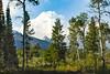 Jackson Hole 1707-1101.jpg (DevonshireMedia) Tags: wyoming jacksonhole travel 2017 grandtetons tetons