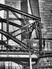 Die Deutschherrnbrücke in Frankfurt (alterahorn) Tags: ezb ecb bce deutschherrnbrücke brücke eisenbahn main frankfurt architektur sw bw zug eisenbahnbrücke