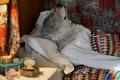 Smile on Saturday: Xmas deco (quietpurplehaze07) Tags: xmasdeco smileonsaturday thewolf falseteeth bedsidetable littleredridinghood hintonampner nationaltrust
