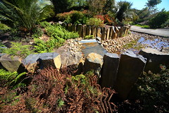 Cranbourne RBG Nov 2017 028 (Graeme Butler) Tags: water landscape history gardens australianplants architecture victoria australia