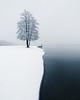 First Snow (Mikko Lagerstedt) Tags: first snow mikko lagerstedt