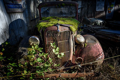 V8 FORD (garshna) Tags: wrecked moss ford truck v8