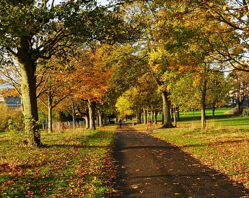 Autumnal Dudhope Park