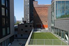 Chelsea Spaces (Blinking Charlie) Tags: thehighline highlinepark urbanlandscape chelsea manhattan nyc newyorkcity newyork usa 2017 sonydscrx100m3 blinkingcharlie