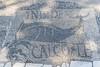Fish Mosaic (- Ozymandias -) Tags: italy it italia roma lazio rome ostia roman ostiaantica lidodiostia scavi romanempire