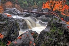 Take me to the water (pandt) Tags: whitewater prospectstatescenicviewpoint stateparks oregon prospect rogueriver rocks forest trees leaves fall colors color orange green white longexposure scenic outdoor beautiful water nature canon eos 7d slr