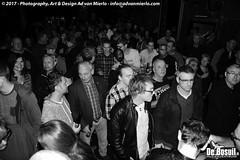 2017 Bosuil-Het publiek tijdens het optreden van Popa Chubby 1-ZW