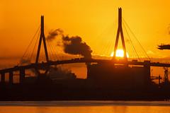 Morgens im Hafen (Lilongwe2007) Tags: hamburg deutschland köhlbrandbrücke sonnenaufgang hafen industrie architektur brücken
