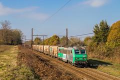 19 novembre 2017 BB 26184 Train 53934 Perpignan -> Rungis St-Loubès (33) (Anthony Q) Tags: 19 novembre 2017 bb 26184 train 53934 perpignan rungis stloubès 33 ferroviaire fret saintloubès nouvelleaquitaine france sncf bb26000