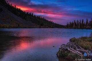 Fall Colors - Twin Lakes Stump #2