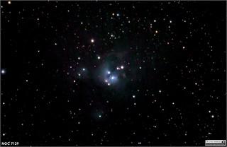 Reflection Nebula NGC 7129 in Cepheus
