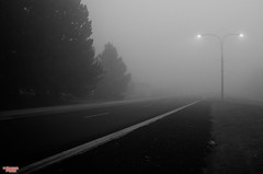 Into A Mystery (MBates Foto) Tags: availablelight blackandwhite existinglight fog monochrome nikkorlense nikon nikond7000 outdoors pacificnorthwest rural urban washington spokane usa