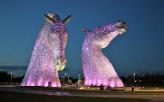 The Kelpies by Night (Yorkie Chris) Tags: helixpark falkirk scotland lovescotland sculptures horses thekelpies kelpies steel metal