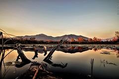 primordiale /primordial (IVAN 63) Tags: sunset sundown riserva naturale torbiere del sebino riservanaturaletorbieredelsebino