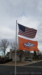 November 19, 2017 - Broncos fans are in distress at this point. (Thornton Weather)